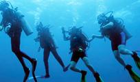 Aquaworld Cancun AM 2 Tank Reef Dive