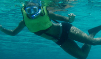 Paradise Snorkeling Cancun